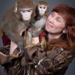 шоу обезьянок