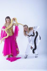 шоу со змеями 3