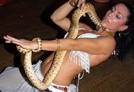 8(965) 380 – 13 – 11. Номер со змеей