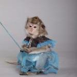 дрессированная обезьянка на праздник