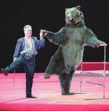 дрессированный бурый медведь 4