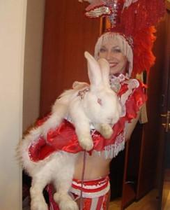 Дрессированные животные на праздник в Москве 5