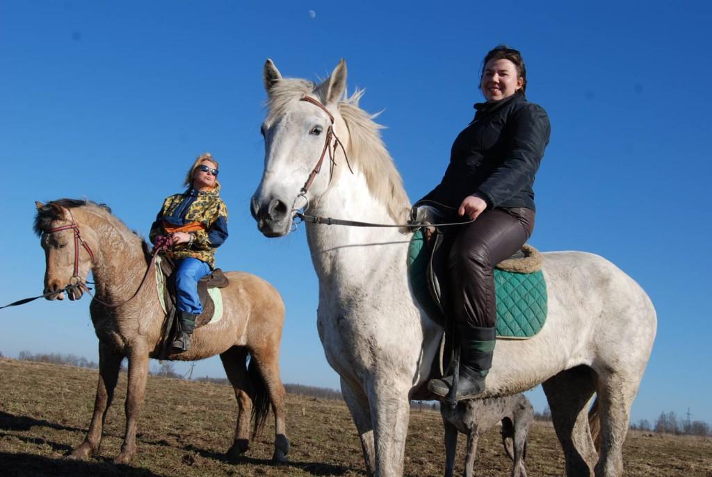 8 (916) 702–11–08 Заказ лошадей