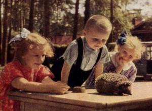 8 (916) 601- 58 -77 Ежики для детей