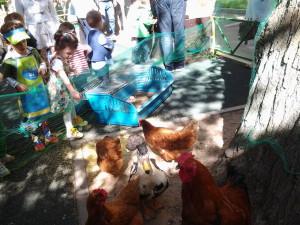 Ферма для детей