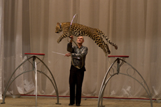 8 (916) 601- 58 -77 Леопард