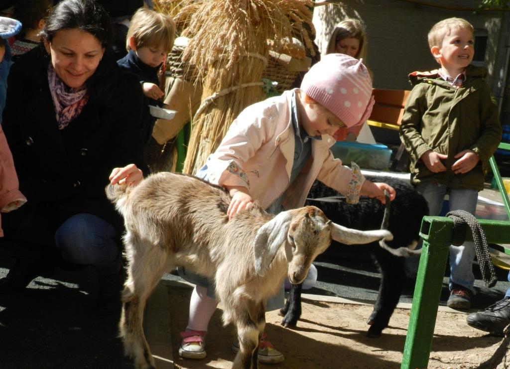 8(916) 601- 58 -77 Контактный зоопарк в Москве