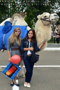 Верблюд в Москве