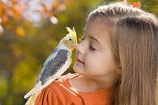 8(965) 380 – 13 – 11.  Домашние животные для детейДомашние животные для детей 3
