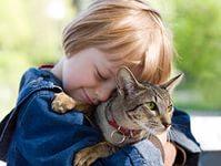 Домашние животные для детей 5