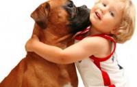 8(965) 380 – 13 – 11.  Домашние животные для детей