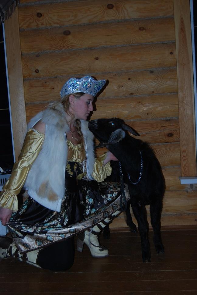 8-965-380-13-11 цирковая коза