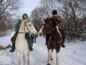 кони 6