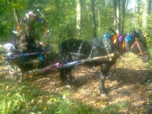 лошадь  с тележкой