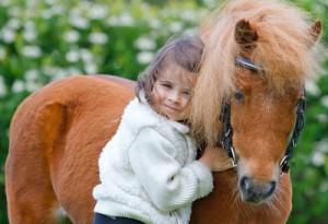 8(965) 380 – 13 – 11. Выставки лошадей в Москве