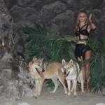волк и волчак