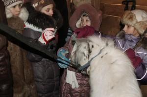 мини-лошадки с детьми
