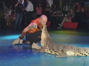 Шоу экзотических животных