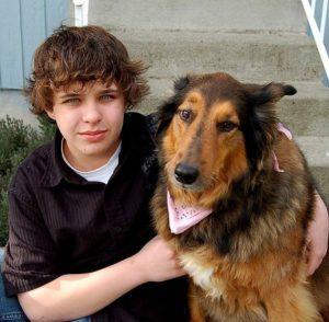 Собаки в воспитании подростков