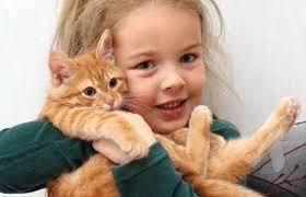 Какие животные подойдут для детей.