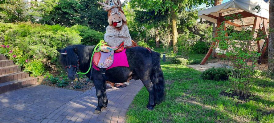 Все дети любят пони!